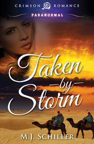 Review: 'Taken by Storm' by M.J. Schiller